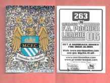 Manchester City Badge 263